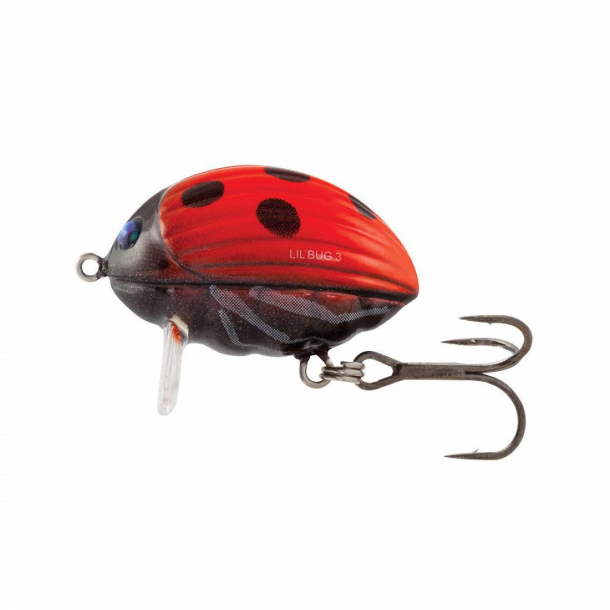 Lil'Bug 3